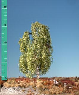 Silhouette 211-xx Hängebirke, Frühling, in 3 Größen, 1:87 / H0