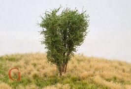 Polak - Laubbaum, 10 cm, savannengrün (9511)