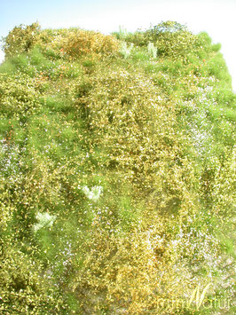 Silhouette - Wildwuchsgebiet, Frühling, ca. 25x15,5cm (732-21S)