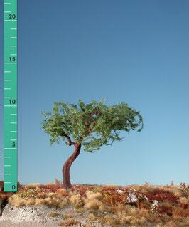 Silhouette - Latschenkiefer, ca 11cm (271-02) (H0)