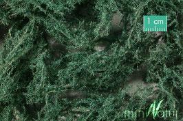 Silhouette - Bodendecker immergrün dunkel (996-22) (H0)