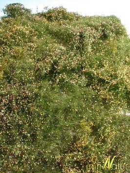 Silhouette - Wildwuchsgebiet, Frühherbst, ca. 25x15,5cm (732-23S)