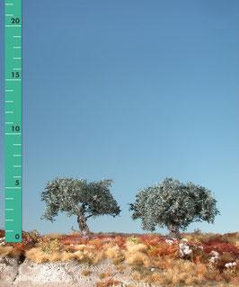 Silhouette - 2 Olivenbäume, Sommer, 245-02, 1:87 / H0