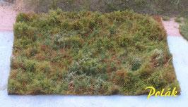 Polak - Waldbestand, Variante A, Standard (9811)