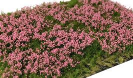 Welberg - Gras mit pinken Blüten, 2-6mm, 15x21cm (PP262)