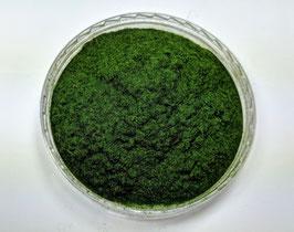 Silhouette/MiniNatur 001-02 Flock Fichte 0,5 mm grün 100g
