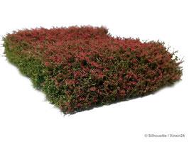 Silhouette - Sträucher rot blühend (250-48) (H0)