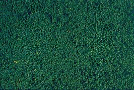 Heki 1603 Belaubungsvlies kieferngrün, mikroflor, 28 x 14 cm