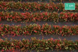 Silhouette/MiniNatur Blumenfeldstreifen rot, 231cm (767-23)