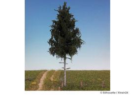 Silhouette - Fichte Hochstamm Profiline, 15-20cm (274-52) (H0)