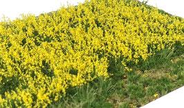 Welberg - Gras mit gelben Blüten, 12mm,  15x21cm (PY2122)