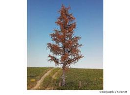 Silhouette - Lärche Winter Profiline, 12-16cm (279-40) (H0)