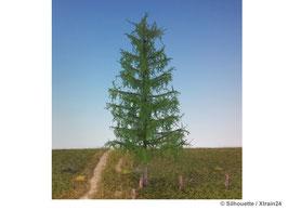 Silhouette - Lärche Sommer Profiline, 12-16cm (279-42) (H0)