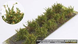 Welberg - SDO 10 Büsche mit orangen Blüten, Höhe 2-3 cm