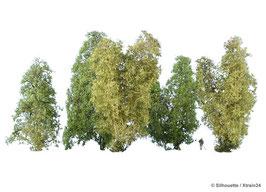 Silhouette/MiniNatur 200-11 Filigranbüsche Frühling, 1:87 / H0, ca 4-6 Stück