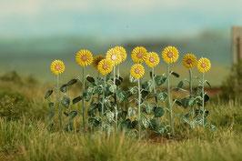 Model-Scene - Sonnenblumen, 1:87 (VG7224) (H0)