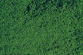 Heki 1602 Belaubungsvlies dunkelgrün, mikroflor, 28 x 14 cm