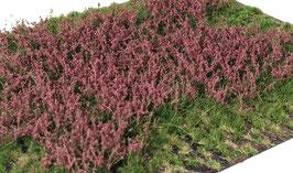 Welberg - Gras mit roten Blüten, 12mm, 15x21cm (PR2122)