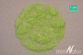 Silhouette/MiniNatur 004-21 Grasflock / Grasfasern, Frühling / spring, 4,5 mm, 50g