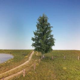 Silhouette - Tanne Profiline, 15-20cm (276-52) (H0)