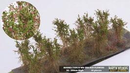 Welberg - SBR 10 Büsche mit roten Blüten, Höhe 3-4 cm
