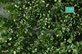 Silhouette/MiniNatur 725-32 Unkrautbüschel mit Blättern, Sommer, 1:45, 42 x 15 cm