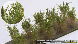 Welberg - SBG 10 Büsche mit gelben Blüten, Höhe 3-4 cm