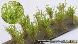 Welberg - SBLG 10 Büsche hellgrün, Höhe 3-4 cm