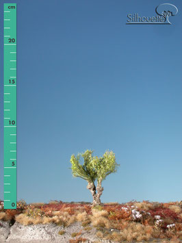 Silhouette 241-01 Kopfweide, Frühling, 1:87 / H0