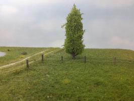 Silhouette 213-41 Pappel, Profiline, Frühling, 12-16 cm, 1:87 / H0
