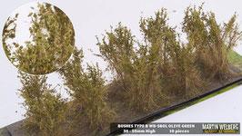 Welberg - SBOL 10 Büsche mit olive grün, Höhe 3-4 cm