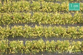 Silhouette/MiniNatur Blumenfeldstreifen gelb, 231cm (767-22)