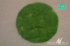 Silhouette/MiniNatur 002-22 Grasflock / Grasfasern, Sommer / Summer, 2 mm, 50g