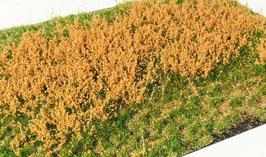 Welberg - Gras mit orangen Blüten, 2-12 mm, 15x21cm (PO2122) (H0)