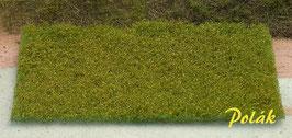 Polak - Blumenwiese rot-gelb (5981)