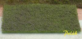 Polak - Blumenwiese violett (5973)