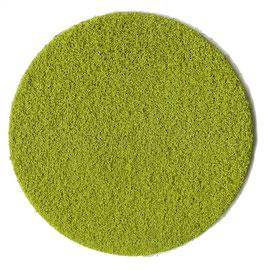 Heki 3384 Belaubungsflocken hellgrün, fein, 200ml