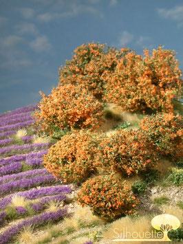 Silhouette 253-03 Rhododendron orange