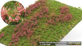 Welberg - Gras mit roten Blüten, 4,5 mm, 15x21cm (PR242)