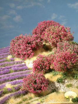 Silhouette 253-05 Rhododendron magenta
