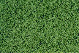 Heki 1601 Belaubungsvlies mittelgrün, mikroflor, 28 x 14 cm