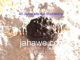 40 jahre alte 4 Augen Rudraksha Nepal sehr hohe feine Energie, sehr hochwertige fassung Kupfer versilbert.