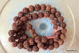 6 Augen Rudrakshamala  aus Nepal, 54 und eine Guruperle  18 -20 mm Dicke der Perlen.