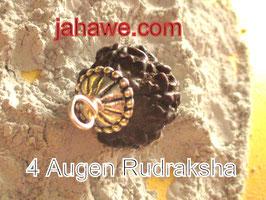 4 Augen Rudraksha 20mm Nepal