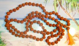 Echte Rudraksha Mala 5 Mukhi 11mm Perlen