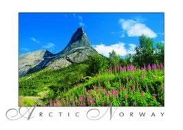 NORGESKORT 030-099