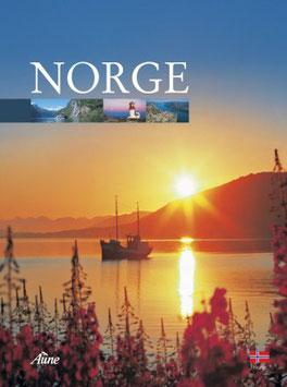 NORGE, INNBUNDET, 128 S.