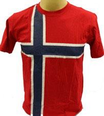 Flagg T-Shirt allover