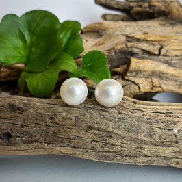 Süßwasser-Perlen Ohrstecker weiß 12mm