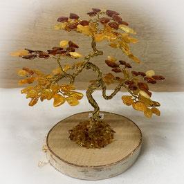 Bernstein Baum
